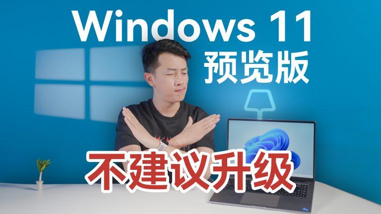 气到骂街!Windows 11 竟然反向升级?